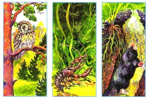 Вырежи рисунки из Приложения. Помести каждое животное в его природный дом.