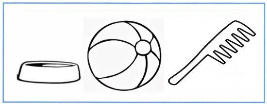 Нарисуйте предметы, которые вы использовали для ухода за животными живого уголка