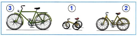 На каком велосипеде ездят в раннем детстве? На каком - когда подрастут? А на каком - когда вырастут