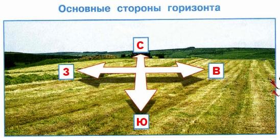 Муравей Вопросик хочет знать названия и обозначения основных сторон горизонта. Назови их (устно) полными словами и обозначь на схеме соответствующими буквами