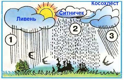 По этой картинке расскажите о дождях. К каким дождям подойдут названия: ливень, косохлёст, ситничек?